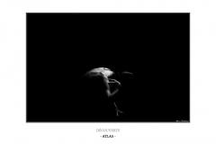 6-atlas-cadre1000px