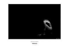 7-primate-cadre1000px